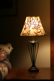 New Lamp with a Story