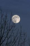 Pleine lune.