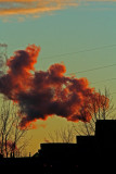 Fumée rouge_Red smoke