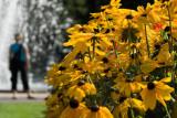 Jardin Botanique de Montreal__Montreal Botanical Garden