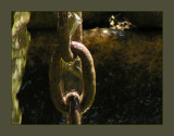 le maillon de la chaîne