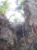 cenote outside of Tulum