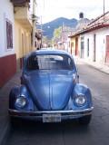 Yucatan, Chiapas, Oaxaca (Mexico), 2006-07