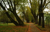 last autumn ,  Horyniec