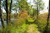 MILICZ near WROCLAW