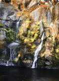 Lewis Creek Near Yosemite