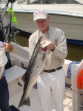 2007 Spring Trophy Striped Bass Fishing - Chesapeake Bay Sportfishing Charters  with Down Time Charters