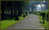 Morning walk to Borobudur