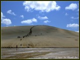 Sand boarding at Te Paki sand dunes