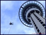 Sky jump from Sky Tower, Auckland