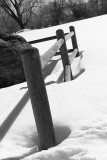 BW fence posts in snow.jpg