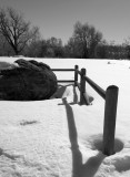 BW fence posts in snow -II.jpg