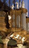 organ, detail