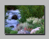 South Big Pine Creek