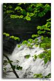 Burgess Falls SP_002.jpg