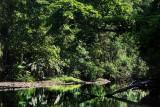 rio madrigal