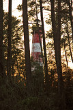 [APRIL 2007] A view of the lighthouse behind the trees, just before dusk.