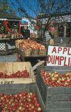 Fall produce at The Delaware Water Gap, PA.