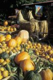 Country store in rural Pennsylvania with Fall produce.