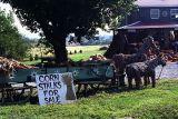 Roadside stall, rural PA
