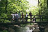 ITF group at Ricketts Glen State Park, PA