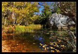 Río Lobos