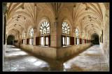 Monasterio de la Vid (claustro)