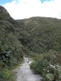Birding the Chiraboga Road
