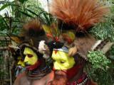 Huli head-dress