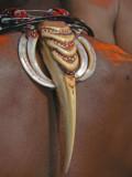 Hornbill necklace