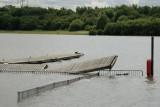 lucky coot (main lake).jpg