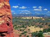 Colours Of Desert
