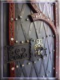 Medieval Door,  Eger, Hungary