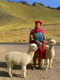 Pretty Gal With Prettiest Alpacas, La Raya Lookout