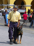 Friendly Policeman , Lima