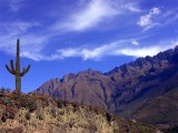 Andes Up High