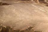 Kolibri, Nazca Desert