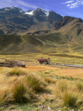 Abandoned Train Station In Andes, Puno