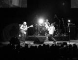 Asia (Live in Santiago)