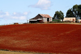 Red Earth farmhouse and buildings