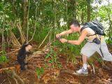 Manuel Antonio National Park -Too Close!