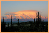 Alpenglow on Denali