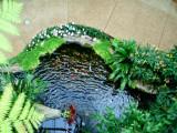 Opryland pond