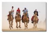 Camels Race, Arad