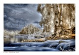 Fairy Tale River