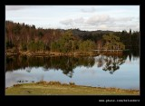 Tarn Howes #10, Lake District