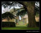 Cedar Lawn Vista to the Stilt Garden, Hidcote Manor