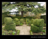 The White Garden Topiary, Hidcote Manor