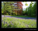 Wightwick Manor #13