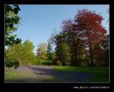 Wightwick Manor #14